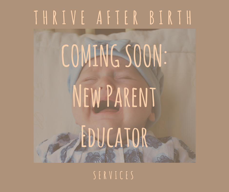 new parent educator